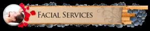 2014 Facial-Services